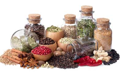 spices-395-250